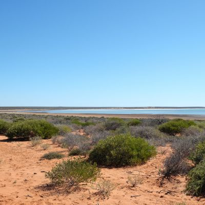 shark_bay_kalbarri_170531_0013.jpg