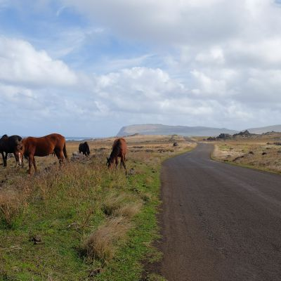 chili_ile_paque_easter_island_oulaoups170712_0074.jpg