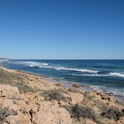 shark_bay_kalbarri_170531_0026.jpg